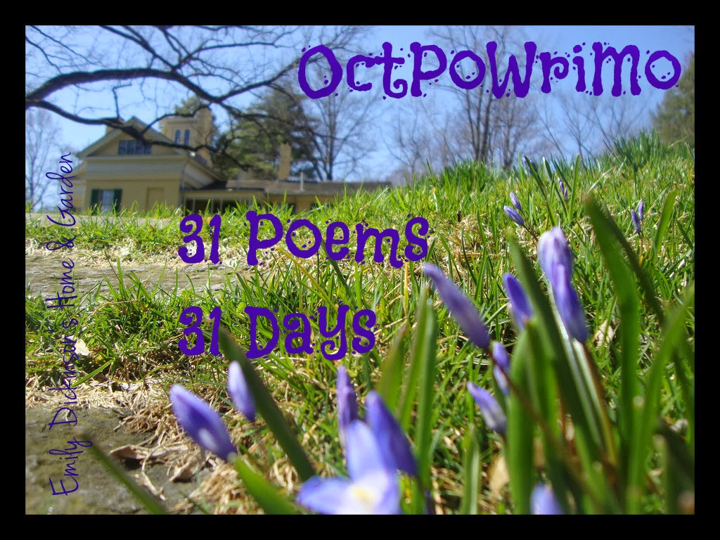 Chance… #OctPoWriMo2018 #Day 31